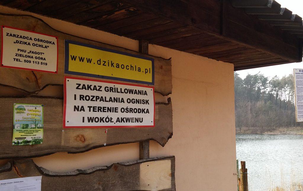 Dzika Ochla_9